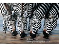 Zebra oil paintings