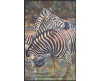 zebra oil paitinigs - tango